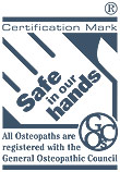 Safe in our hands logo